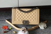 CHANEL LEBOY 25CM BALL MARKS COWHIDE HANDBAG SILVER METAL APRICOT,Handbags,Chanel replicas wholesale
